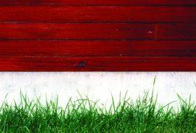 Holz-Gras